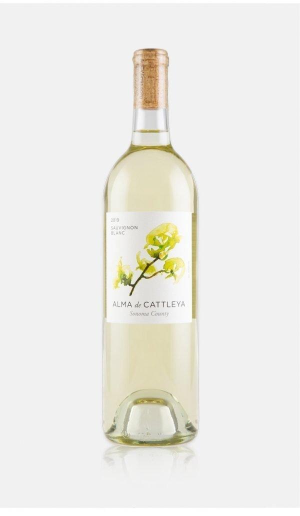 2019 Sauvignon Blanc Bottle