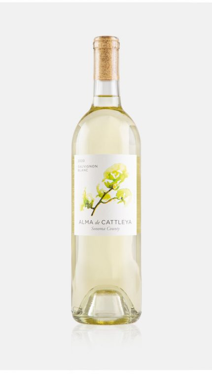 2020 Sauvignon Blanc Bottle