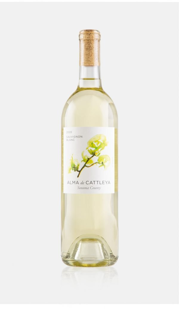 2020 Sauvignon Blanc Bottle